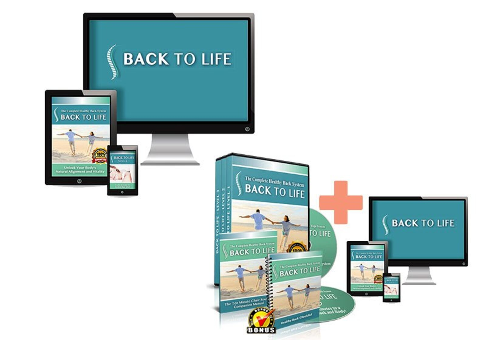 Back to Life Healthy Back System