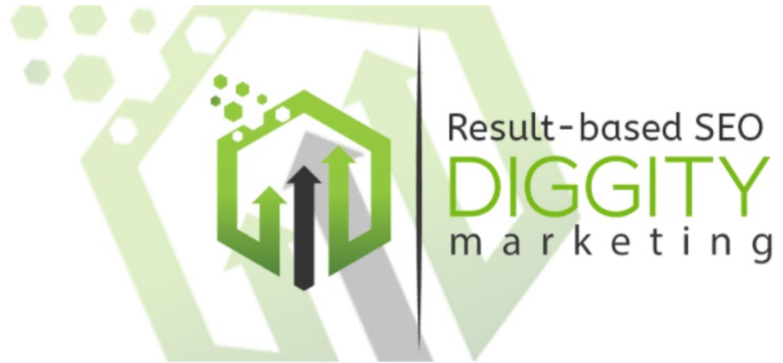 Results based SEO Diggity Marketing