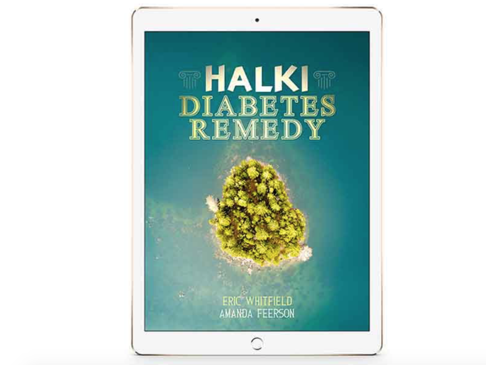 Halki Diabetes Remedy Reviews – A Working Diabetes Remedy Program Or Waste Of Time?