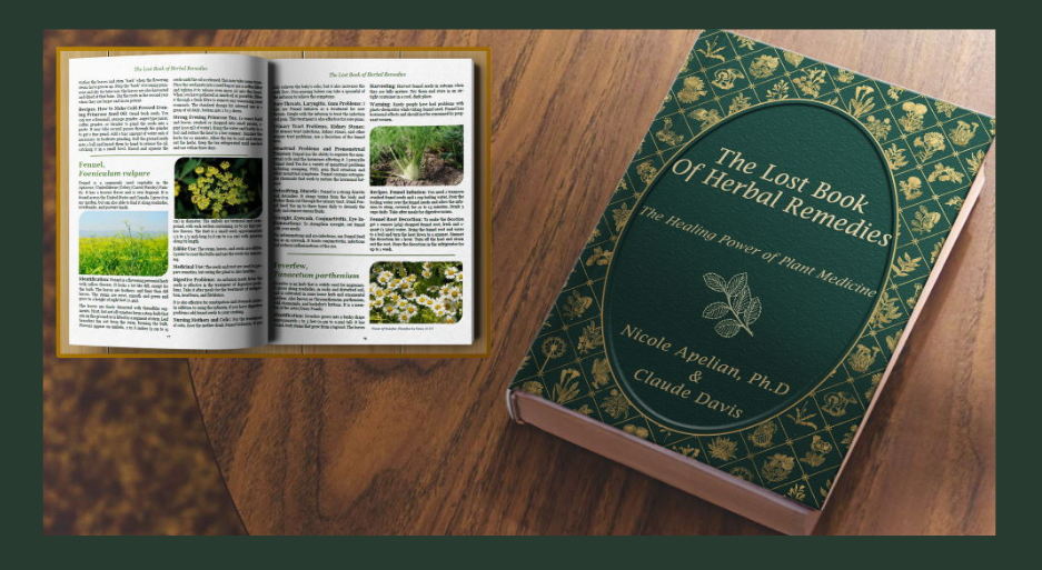 The Lost Book Of Herbal Remedies Description