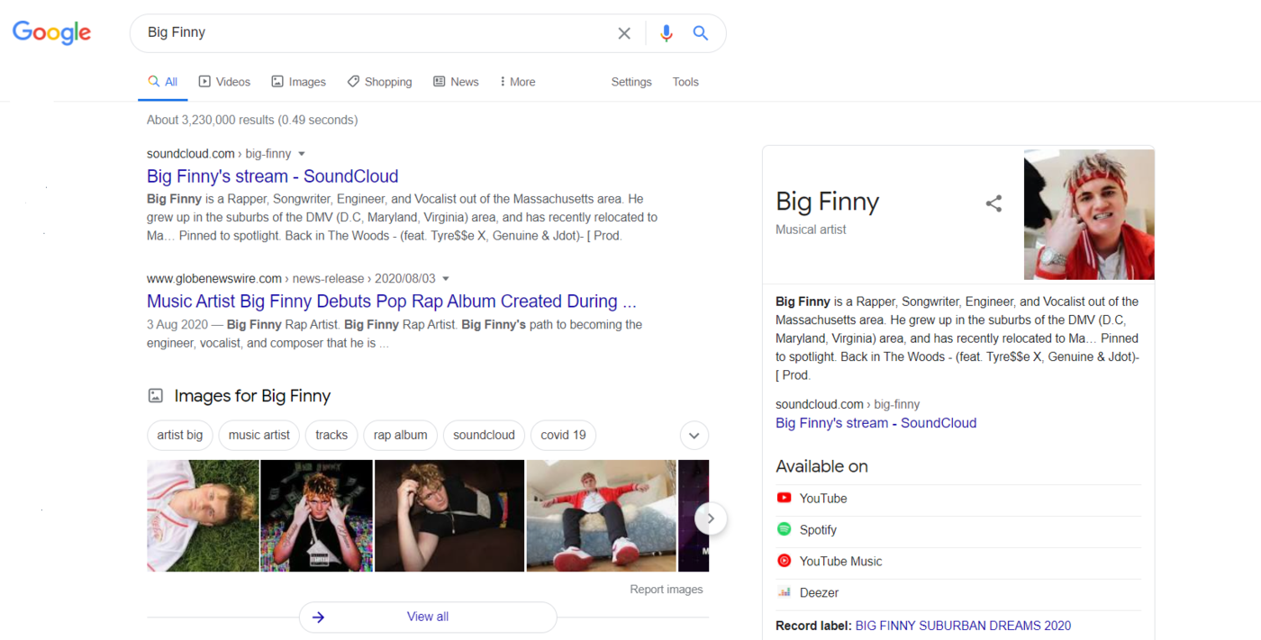 Example  Google Knowledge Panels of Big Finny