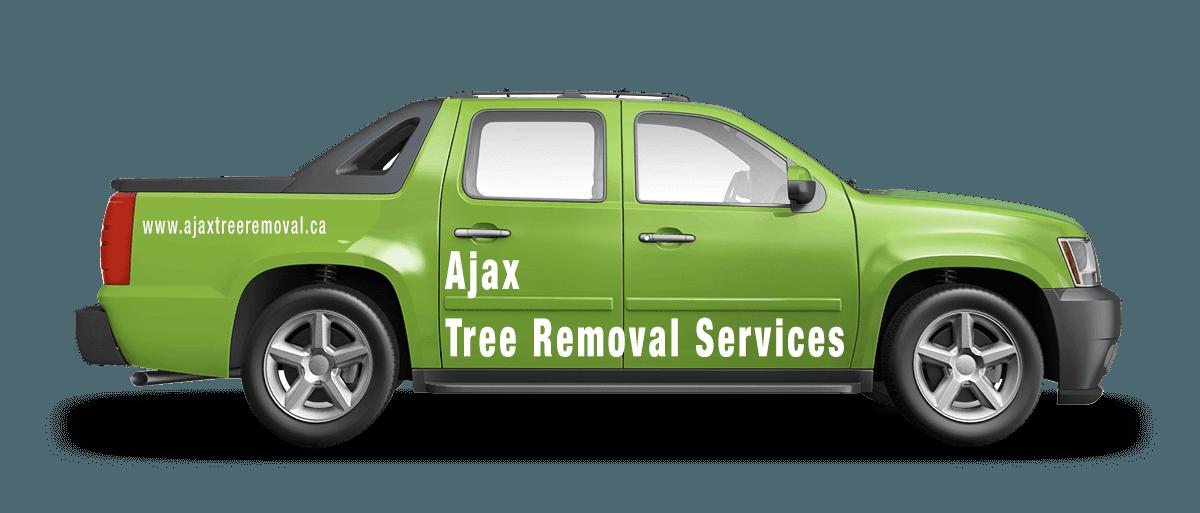 Ajax Tree Removal Service
