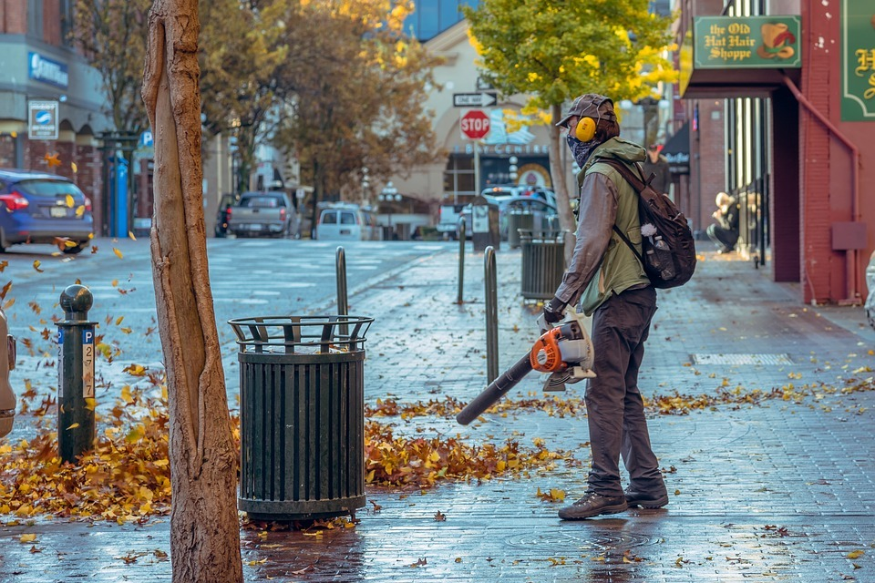 Leaf Blowers Guide