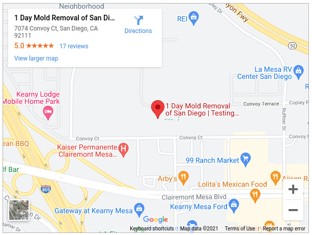 1 Day Mold Removal of San Diego