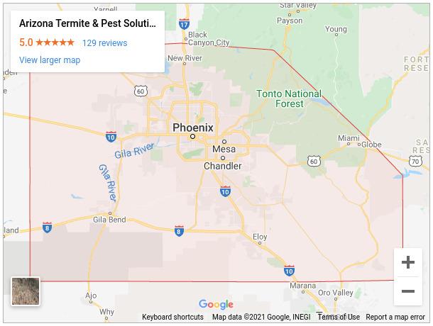 Arizona Termite & Pest Control