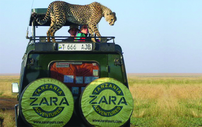Zara Tours Coastal Scuba and African Beaches Tour