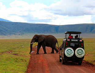 Zara Tours discusses the best east African vacations this Spring.