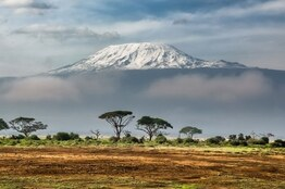 How to Successfully Summit Kilimanjaro in 9 Steps - Zara Tours